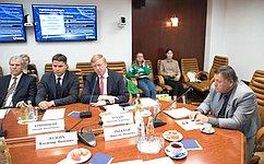 Временная комиссия СФ помониторингу экономического развития заслушала председателя правления РОСНАНО