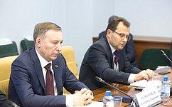 А. Варфоломеев принял участие всовещании, проводимом заместителем Председателя Правительства Российской Федерации О.Голодец