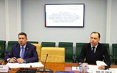 ВСовете Федерации обсудили итоги мониторинга законодательства оправовом положении иностранных граждан
