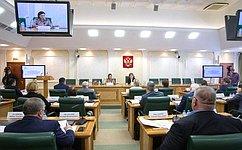 Г.Карелова: Вусловиях новых вызовов социально ориентированным НКО нужны эффективные инструменты для активного участия всоциальных проектах