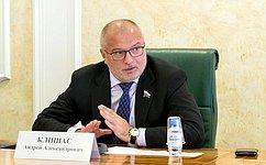 А. Клишас: Сенаторы поддерживают предлагаемые Правительством изменения вУголовно-исправительный кодекс