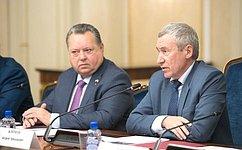 Временная комиссия СФ определила наиболее актуальные направления вмешательства вовнутренние дела России