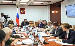 ВСовете Федерации обсудили участие российских миротворцев взарубежных миссиях