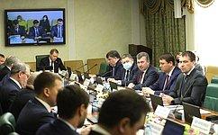 Финансовое обеспечение строительства социально значимых объектов вДагестане рассмотрел Комитет СФ поэкономической политике