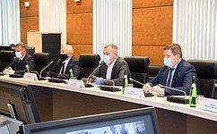 С. Горняков: ВВолгоградской области предусмотрены адресные меры поподдержке пожилых людей исдерживанию распространения коронавируса