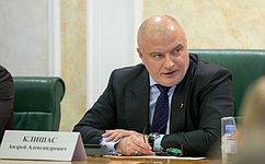 А. Клишас: Представленный Президентом РФ комплекс мер создает основу для преодоления последствий распространения инфекции