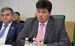 М. Маргелов провел рабочую встречу сЗ. Элькиным