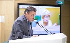 В.Тимченко представил отчет оработе Комитета СФ Регламенту иорганизации парламентской деятельности за2019год