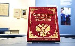 Комитеты СФ провели обсуждение закона РФ опоправке кКонституции Российской Федерации