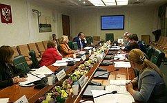 Сенаторы обсудили возможность использования средств материнского капитала нагазификацию
