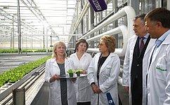 В.Матвиенко: Новый тепличный комплекс вЛенинградской области– уникальное предприятие для всей страны