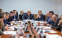 ВСовете Федерации обсудили вопросы обеспечения судоходства нареке Волге