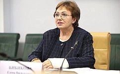Е. Бибикова приняла участие вобщественных слушаниях оработе частных игосударственных пансионатов для престарелых иинвалидов