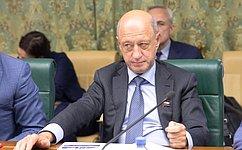ВСовете Федерации обсудили ход реализации федеральных проектов «Транспортно-логистические центры» и«Морские порты России»