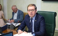 А. Майоров: Профильный Комитет СФ рассмотрел проект постановления палаты к«правительственному часу»
