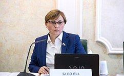 Л. Бокова: Включение муниципальных телеканалов вобязательный общедоступный перечень обеспечит доступ ксоциально значимой информации