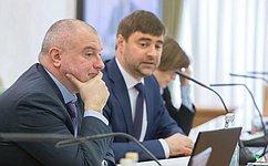 Комитет СФ поконституционному законодательству игосударственному строительству рекомендовал кодобрению поправки вантипиратский закон
