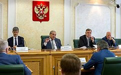 ВСовете Федерации обсудили стратегию развития железнодорожного транспорта Дальнего Востока иБайкальского региона