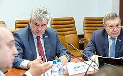 ВКомитете СФ пообороне ибезопасности рекомендовали одобрить закон осовершенствовании профилактики терроризма