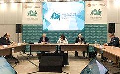 Ф. Мухаметшин: Необходимо использовать имеющийся потенциал взаимодействия России сисламскими странами винформационном пространстве