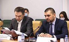 ВСовете Федерации совершенствуется порядок работы сэлектронными обращениями граждан