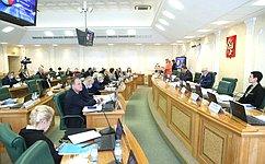 Профильный Комитет СФ предварительно обсудил доклад Уполномоченного поправам человека вРФ за2020год