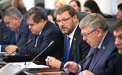 ВСовете Федерации обсудили вопросы совершенствования законодательства всфере применения электронных виз