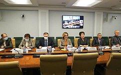 И.Святенко: Законодательные инициативы сенаторов обеспечат необходимый уровень социальных гарантий