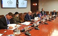 Парламентарии России иПарагвая обсудили противодействие распространению новой коронавирусной инфекции иразвитие цифровых технологий