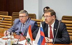 Руководители комитетов СФ помеждународной исоциальной политике провели встречу сМинистром здравоохранения Ливана