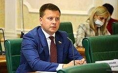 А. Пронюшкин: Важно обеспечить поддержку производителей народных промыслов изащитить их отнедобросовестной конкуренции