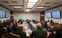 ВКомитете СФ пообороне ибезопасности обсудили реализацию концепции развития войск национальной гвардии России