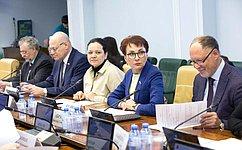 ВКомитете СФ посоциальной политике поддержали изменения взаконодательство остраховой медицине
