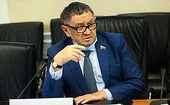 Перспективы разработки ипроизводства отечественных самолетов гражданской авиации обсудили вСовете Федерации