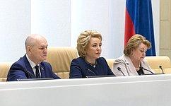 В. Матвиенко обсудила сактивистами экологического просвещения итоги Года экологии