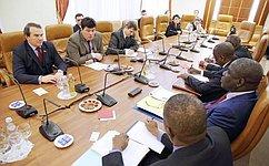 М. Маргелов провел встречу сминистром Правительства Мали А. Силлой
