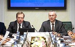 Модернизацию ирасширение магистральной инфраструктуры Новосибирской области рассмотрели вСовете Федерации