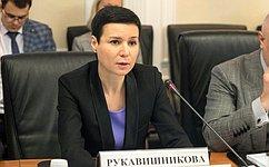 Школьное образование должно сближаться сбудущим профильным образованием— И.Рукавишникова