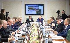 Транспортную доступность имодернизацию электросетевого комплекса Сахалинской области обсудил Комитет СФ поэкономической политике