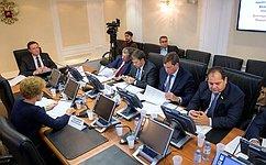Поправки кпроекту федерального бюджета на2019год инаплановый период 2020 и2021годов рассмотрели вСовете Федерации