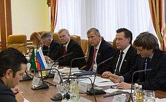 Сенаторы России иБразилии обсудили межпарламентские связи ивопросы международной политики