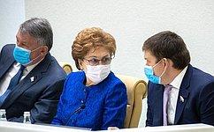 Сенаторы обсудили меры поддержки граждан иэкономики впериод борьбы скоронавирусной инфекцией