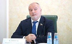 А.Клишас: Российский законодатель исходит изнеобходимости следования национальным интересам при соблюдении норм международного права