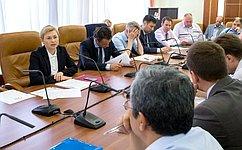 Л. Бокова: Необходимо решить вопрос, связанный сконтролем идентификаторов мобильного пользовательского оборудования