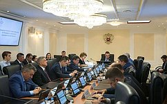 Сенаторы обсудили выполнение контрольных поручений профильными комитетами Совета Федерации