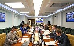 Законодательное обеспечение совершенствования информационной инфраструктуры ицифровых технологий рассмотрели вСФ