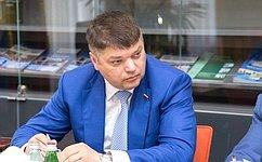 Д. Василенко принял участие взаседании рабочей группы оргкомитета Российско-Германского сырьевого форума