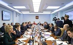 ВСовете Федерации обсудили законодательное обеспечение развития малой авиации