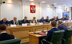 ВСовете Федерации рассмотрели факты, содержащие признаки иностранного вмешательства ввыборы вМосгордуму