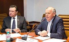 ВКомитете СФ побюджету ифинансовым рынкам прошло совещание повопросу введения курортного (туристского) сбора